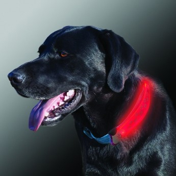 NiteIze NiteDawg Collar Cover