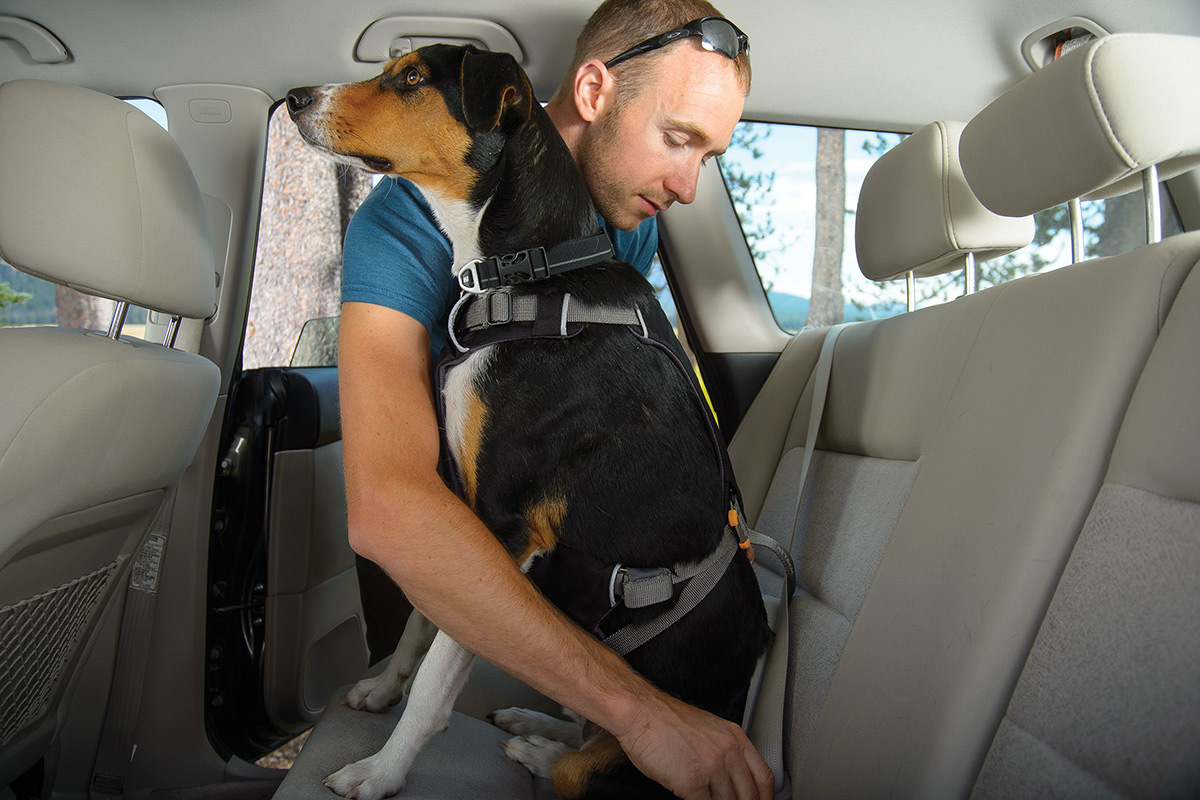 ruffwear load up harness hunde auto geschirr. Black Bedroom Furniture Sets. Home Design Ideas