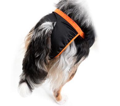 Hurtta Hygienehöschen - activeDogs24.de - Outdoorbedarf für Hunde