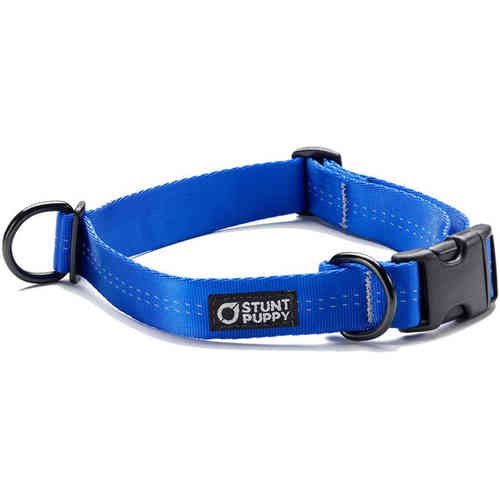 Stunt Puppy Everyday Collar