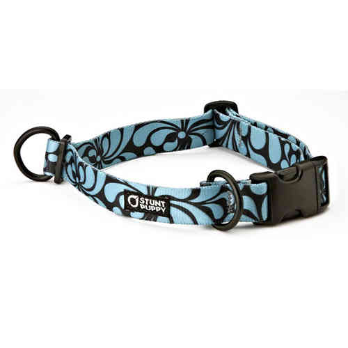 Stunt Puppy Croakies Everyday Collar