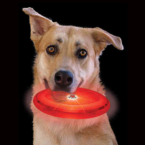 "Nite Ize Flashflight ""Dog Discuit"" LED Frisbee"
