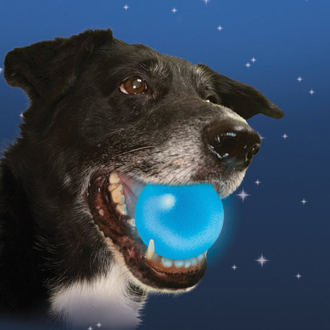 Nite Ize Meteorlight K-9 LED Dog Ball